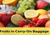 Fruits in Carry-On Baggage