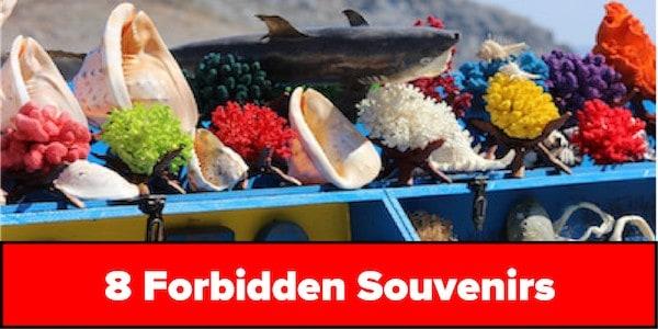 8 forbidden souvenirs big
