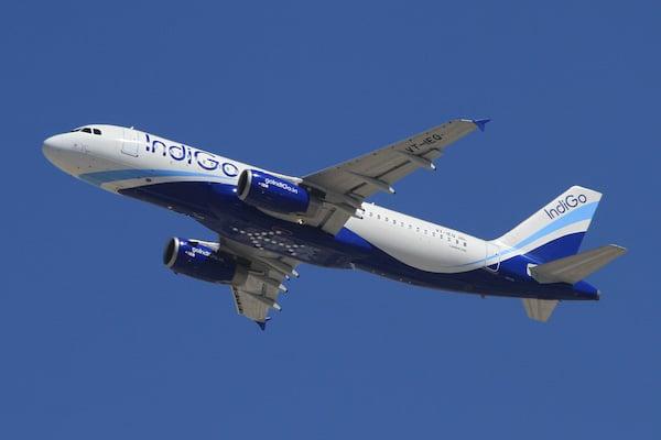 Indigo Airplane