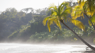 How to Get to Tamarindo Costa Rica
